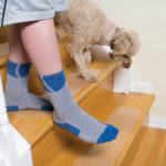Puppy Treads Socks Kid with Dog Slippery Wooden Steps